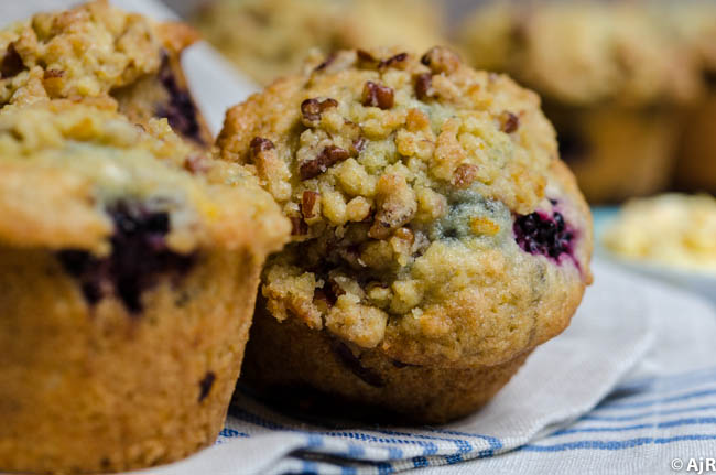 Berry Orange Muffins